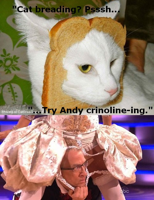 Andy Breading